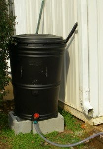 rain barrel new